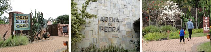 rayal palm plaza 1